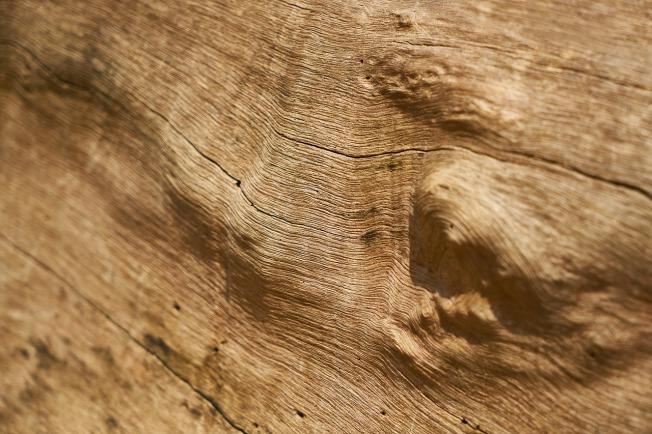 wood-3052032_1280
